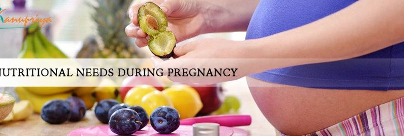 Pregnancy Nutrition Plan